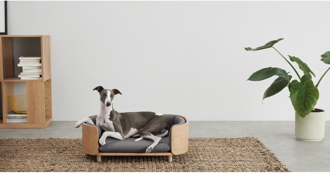 Kyali Dog Sofa - £159