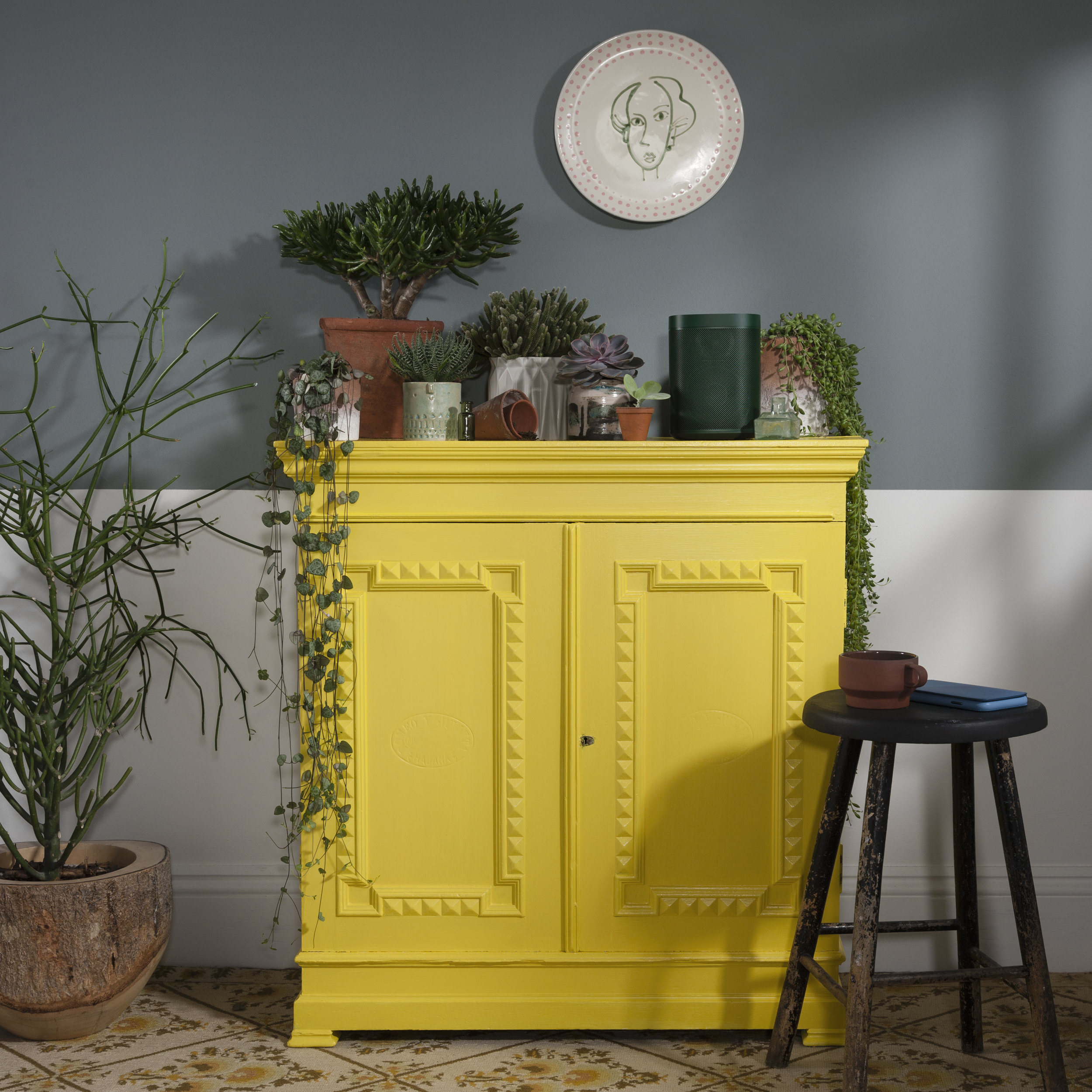 - Rather controversially, we decided to paint the cabinet bright, Gen Z Yellow (the colour of the moment). However, the dark green of the speaker contrasts perfectly with the bright, lemony cabinet. To avoid the space becoming too light we painted half of the wall a pale, green-grey to give you an idea of how the green works against other darker shades. We then ran around gathering all of the plants and pots dotted around the studio; like I said, the first time we came across this speaker it reminded us of the houseplant jungle at home and we loved the idea of having it nestled amongst them. Of course, a Jackson & Levine x Habitat plate had to be included as we're so in love with the beautiful design and the subtle pop of pink works perfectly with the green of the speaker