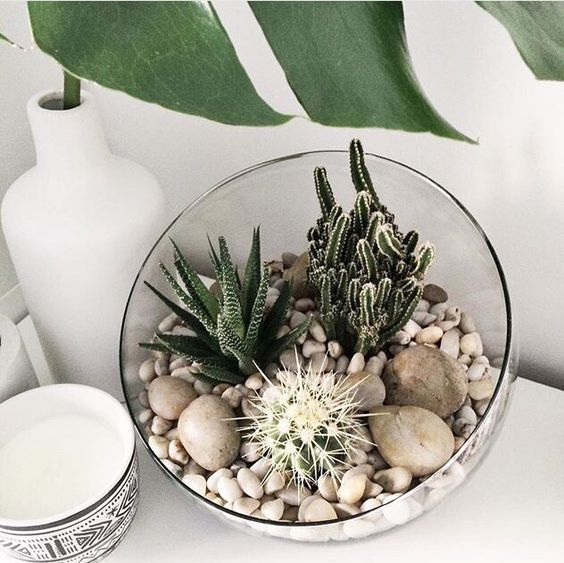 6. Cactus Arrangements - Step aside monstera, everyone's favourite houseplant is back! This new take on the trend sees cacti creatively paired with other succulents to make composed arrangements.