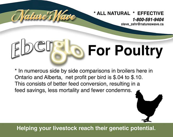 natureswave_Poultry18_schoolsaleweb.jpg
