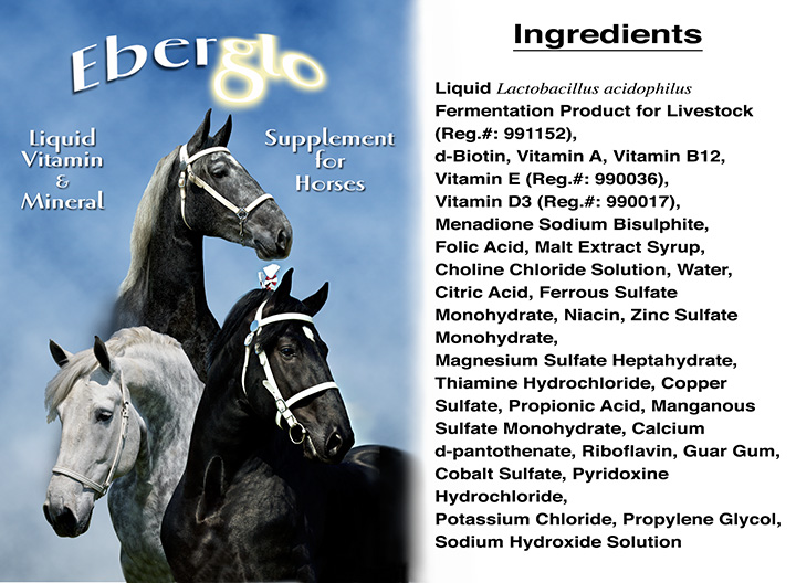 eberglolabel_ingredients web.jpg