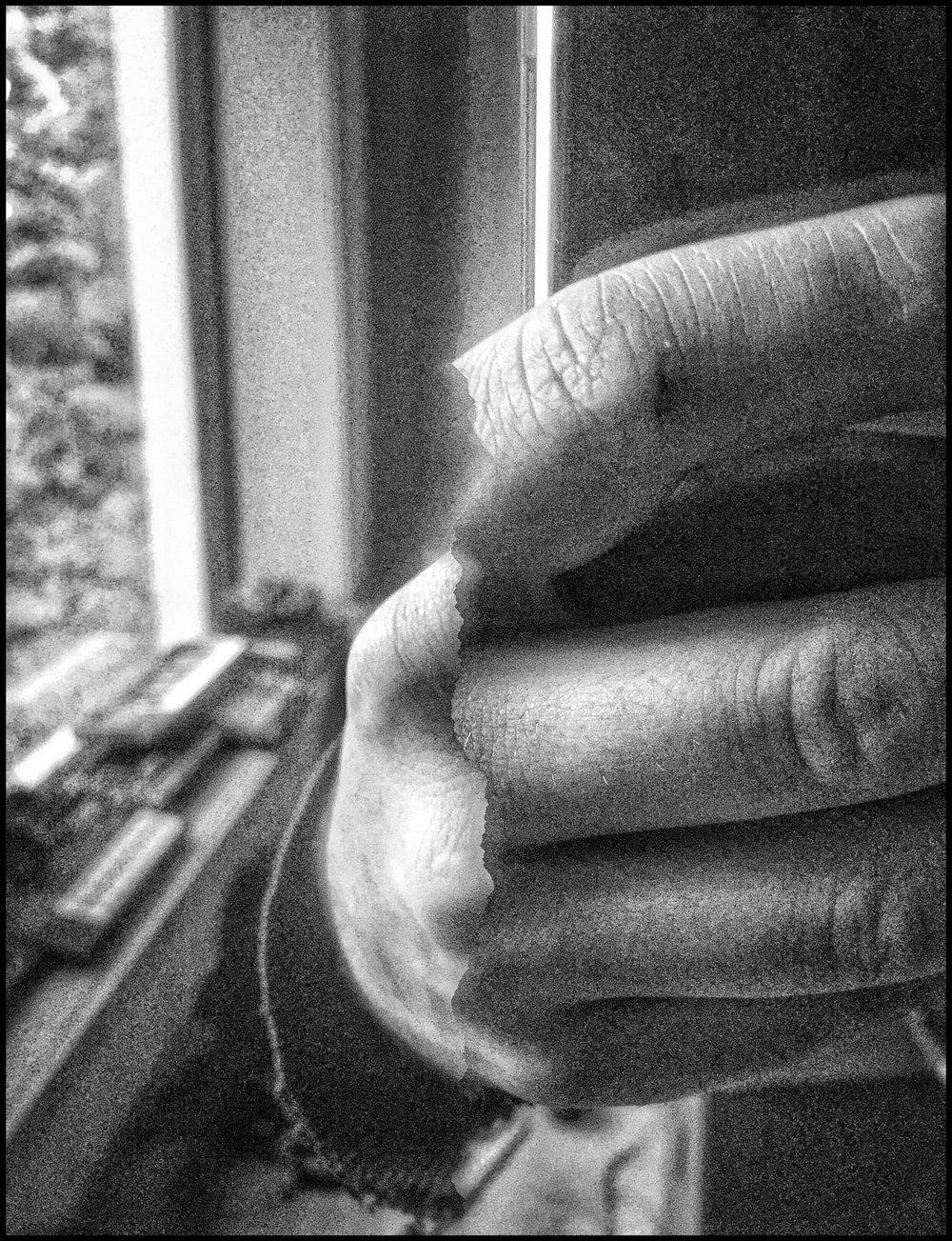 Snapseed+(1).jpeg