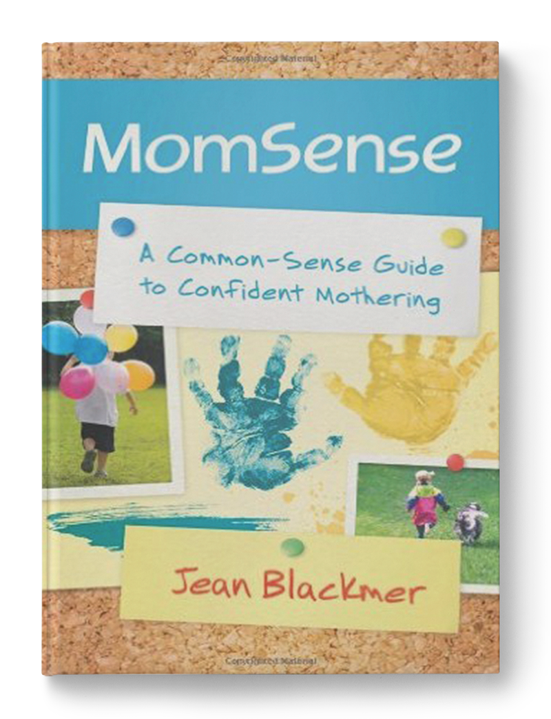 """With personal stories from real moms and proven, practical advice,    MomSense  helps you honestly assess your skills, embrace your mothering instincts, and develop your own unique mothering style. Rather than pushing one """"right"""" way to be a mom, this hope-filled book shows you that you can have contentment, joy, and confidence in your role as Mom."""