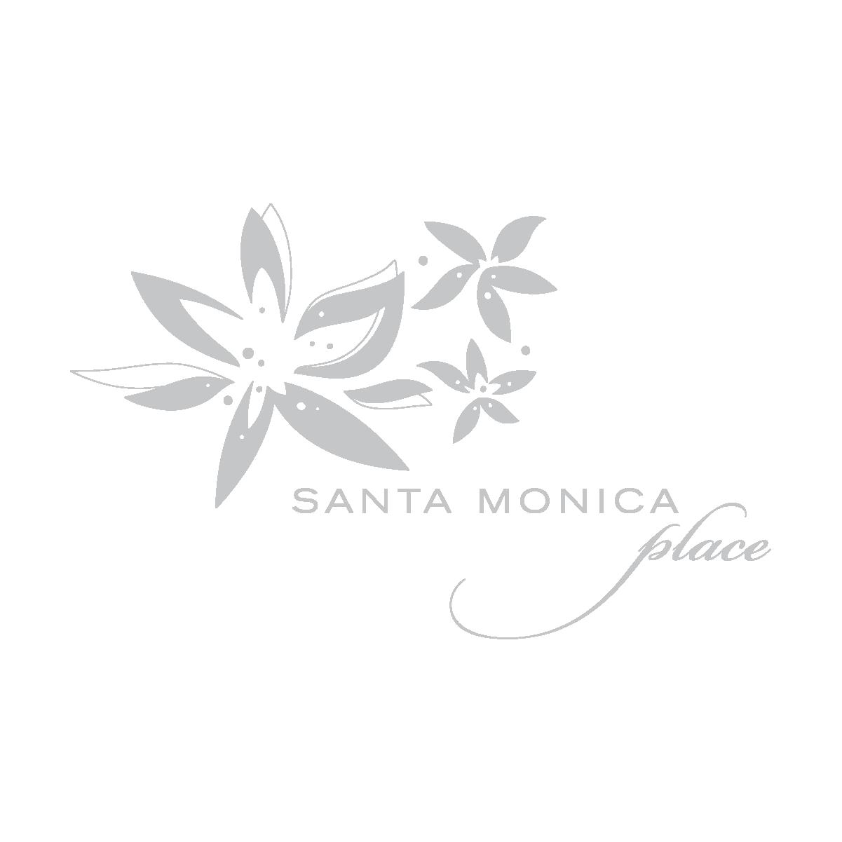 Santa Monica Place.png
