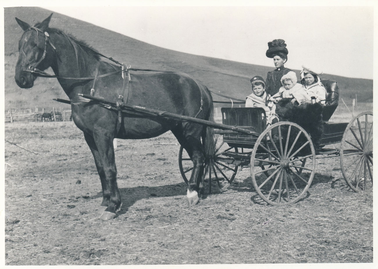 (Image: Bruce's great-grandmother in her buggy with her three children: Lavinia Jr., Norah and Sandy.This image is on the cover of  Coming Hone From Home .)