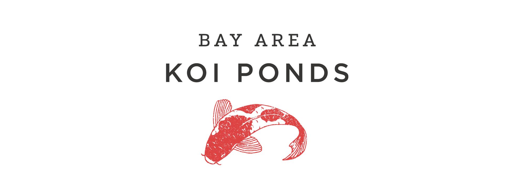 bay area koi pond artwork.png