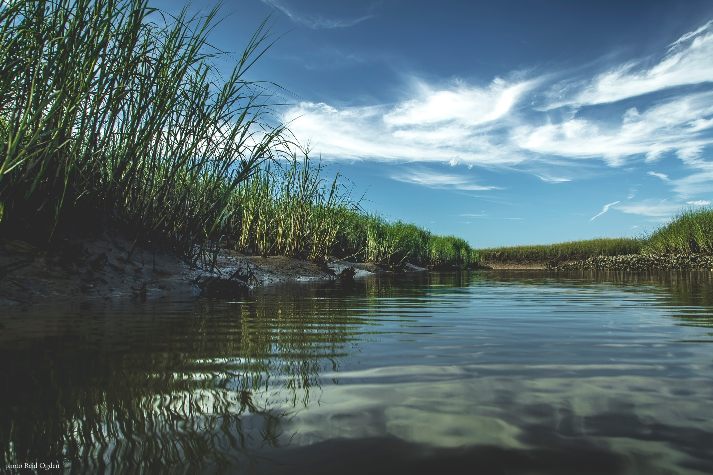 Professionally guided fly fishing adventures in the Charleston, SC region. We specialize in sight fishing for redfish covering an array of inshore habitats.  -