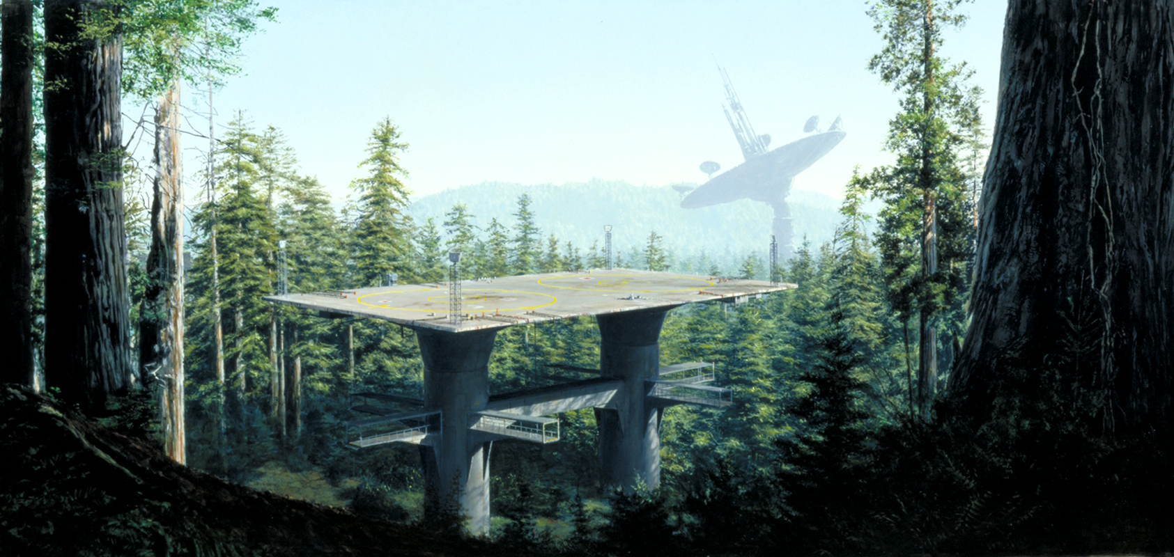 Screen Still of Endor from the Movie  Return of the Jedi
