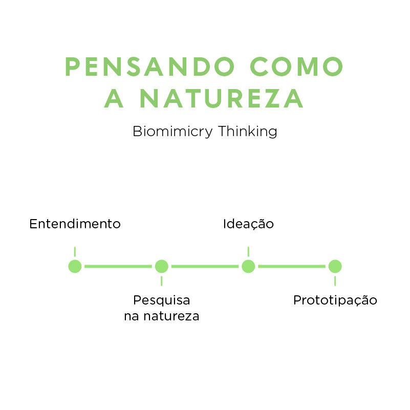 Espaço D Biomimetica pensando como a natureza.jpg