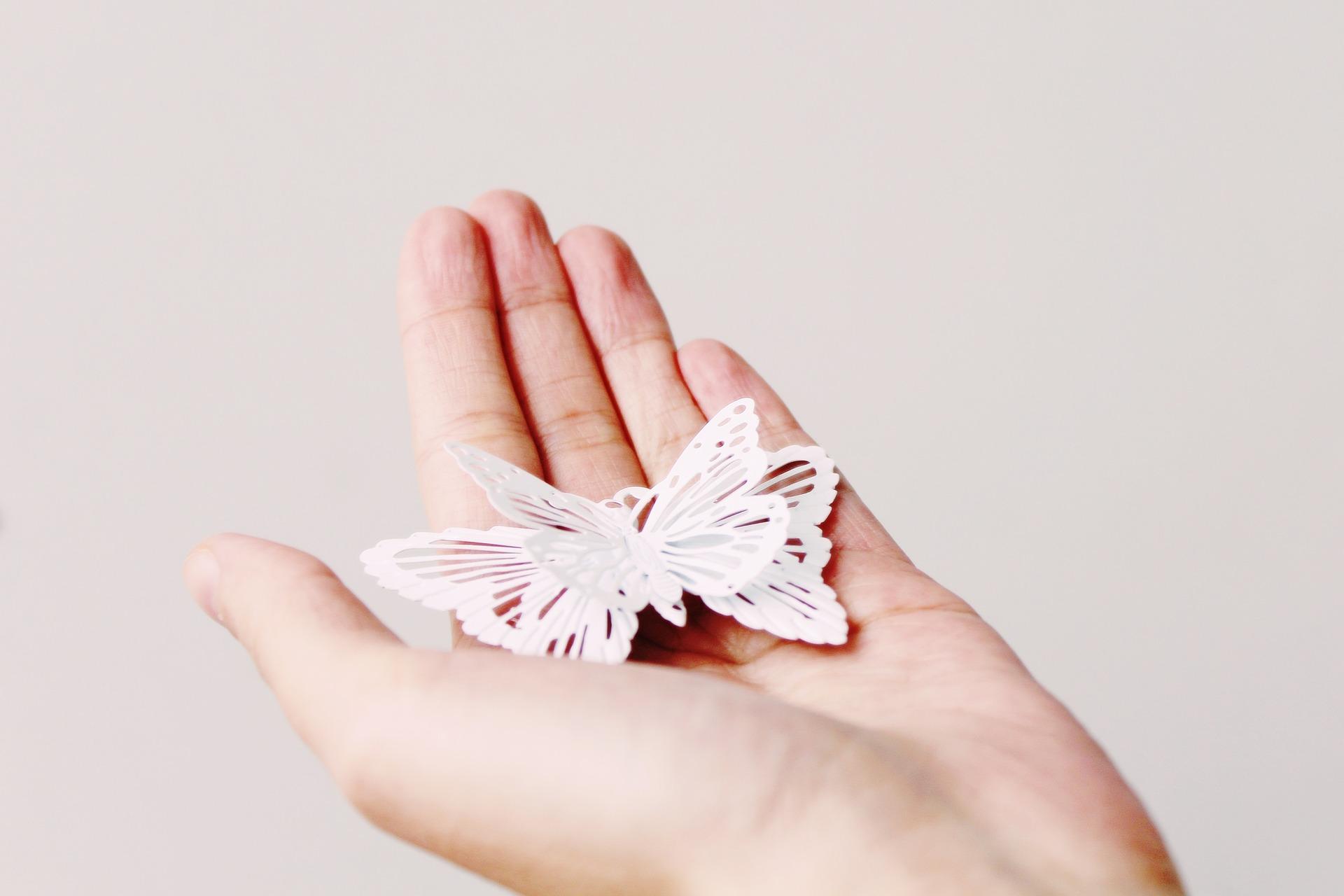 pillangós.jpg
