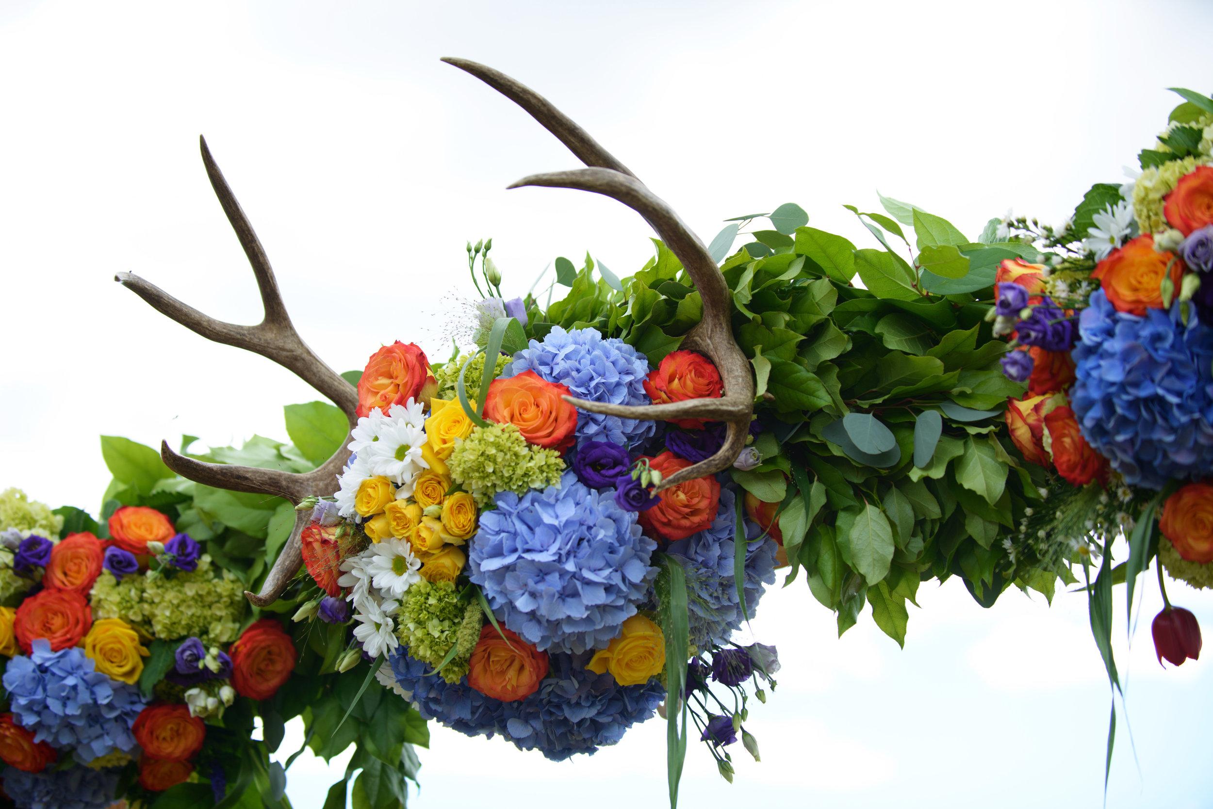 Alan Maudie Photography Flowers by Janie