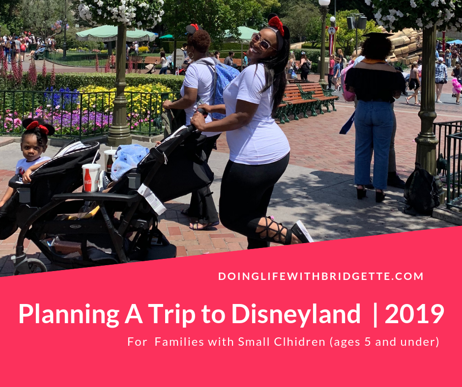 Disneyland Planning Guide 2019 (1).png