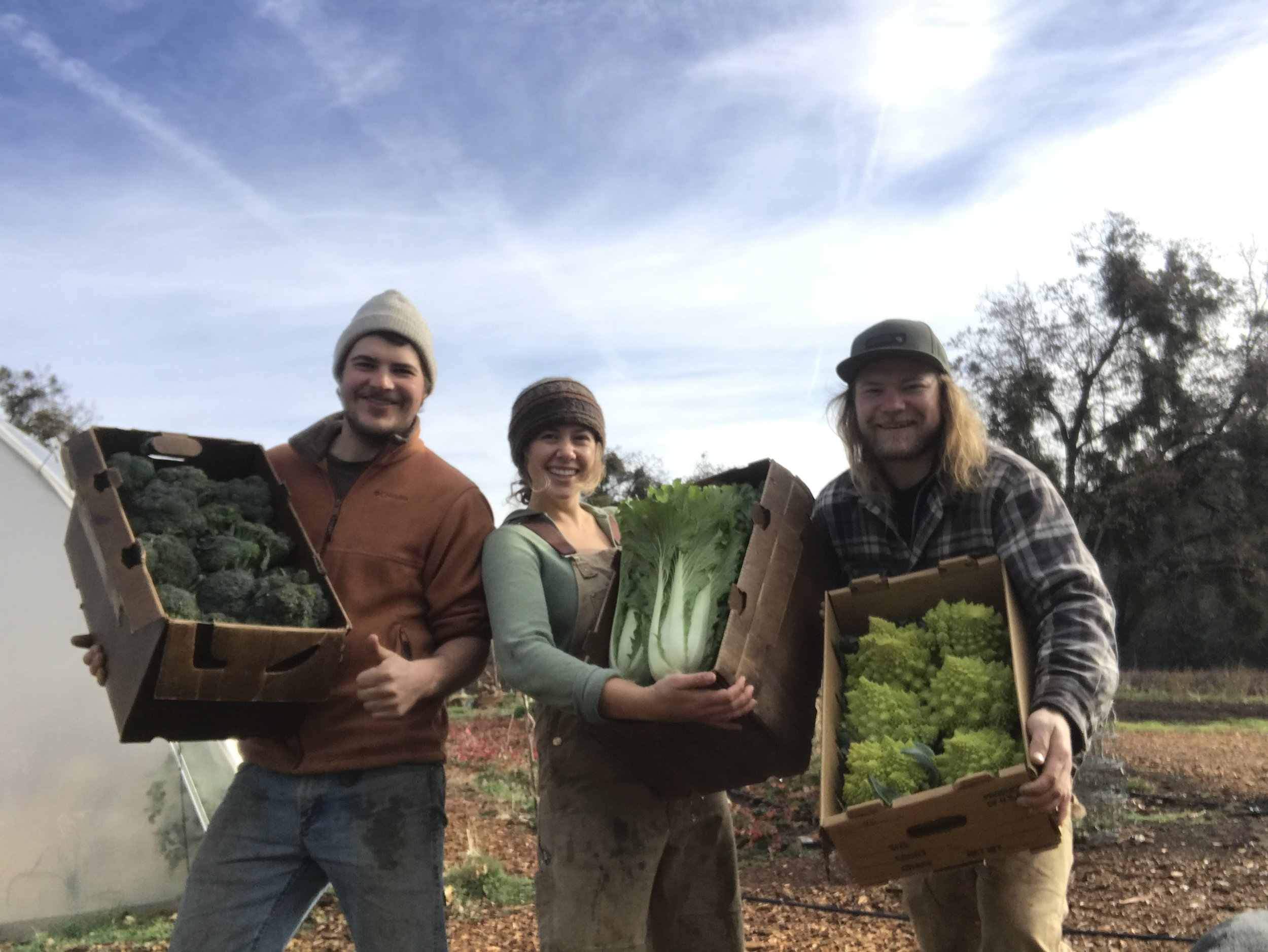 Our Team - Laughing Mother Farm team is dedicated to growing fresh local organic produce for the sierra foothill region. Learn more about who we are below or better yet come see us at a local farmers Market or at the Farm.