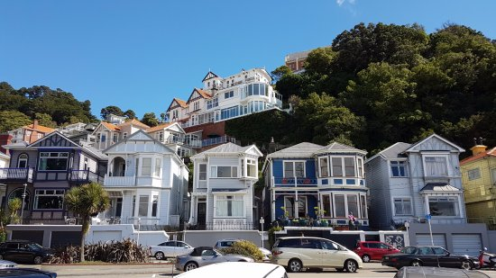 houses-at-oriental-bay.jpg