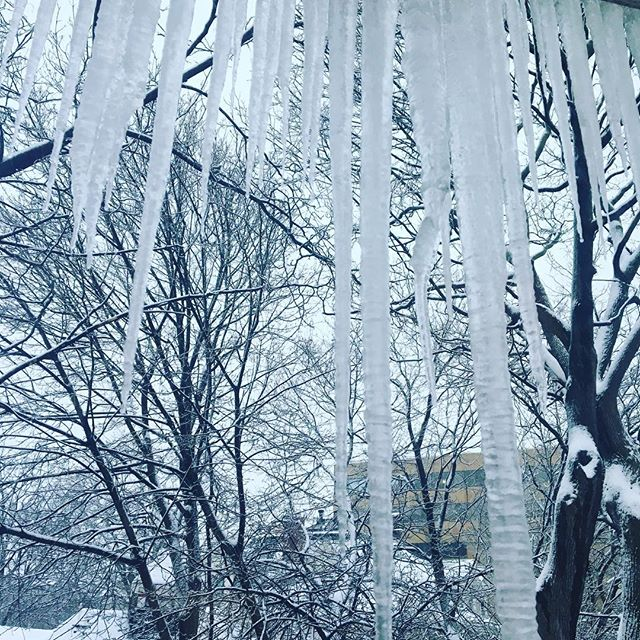 Winter wonderland view from my room. Mean icicles every year.  #currentview #winter #ice #naturalart