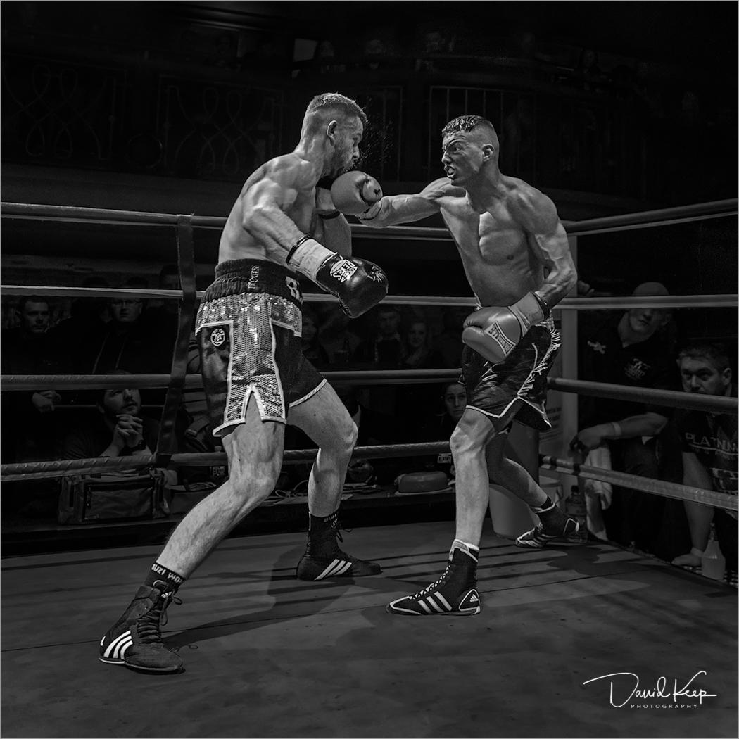 Fight Night at the Palais.jpg