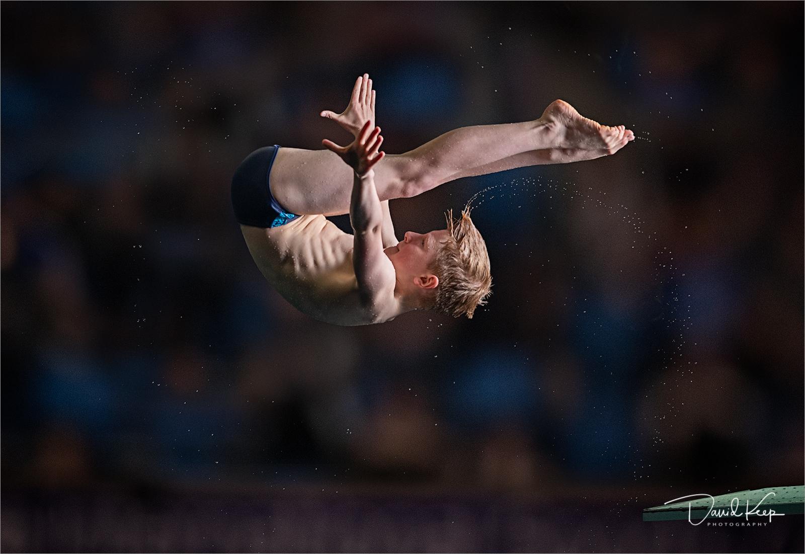 Boy Diver.jpg