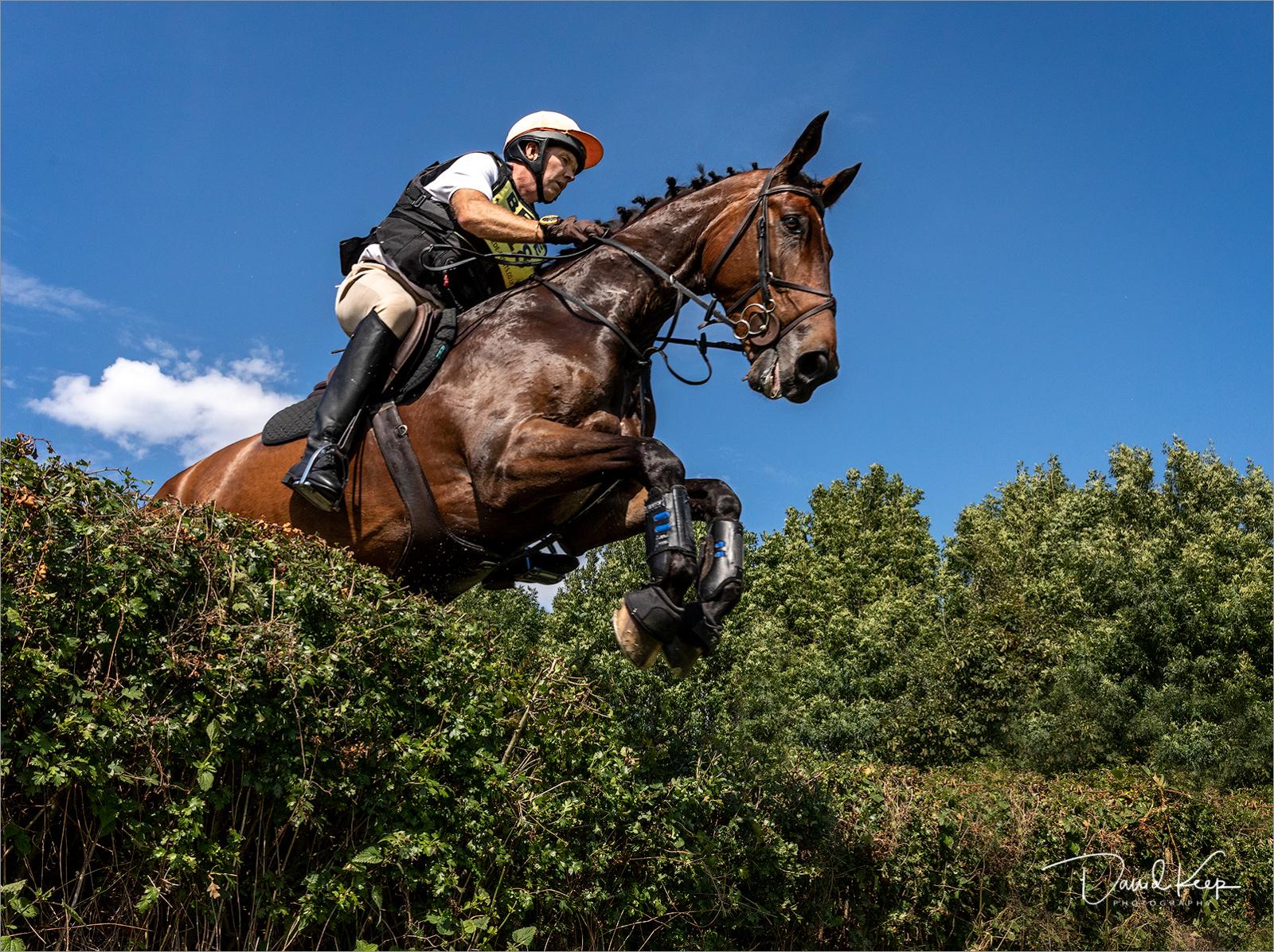 Horse Jumping (1 of 1).jpg