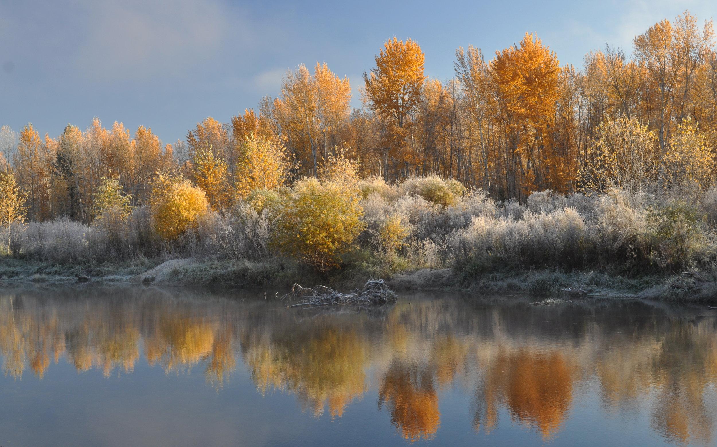 bitterroot montana.jpg
