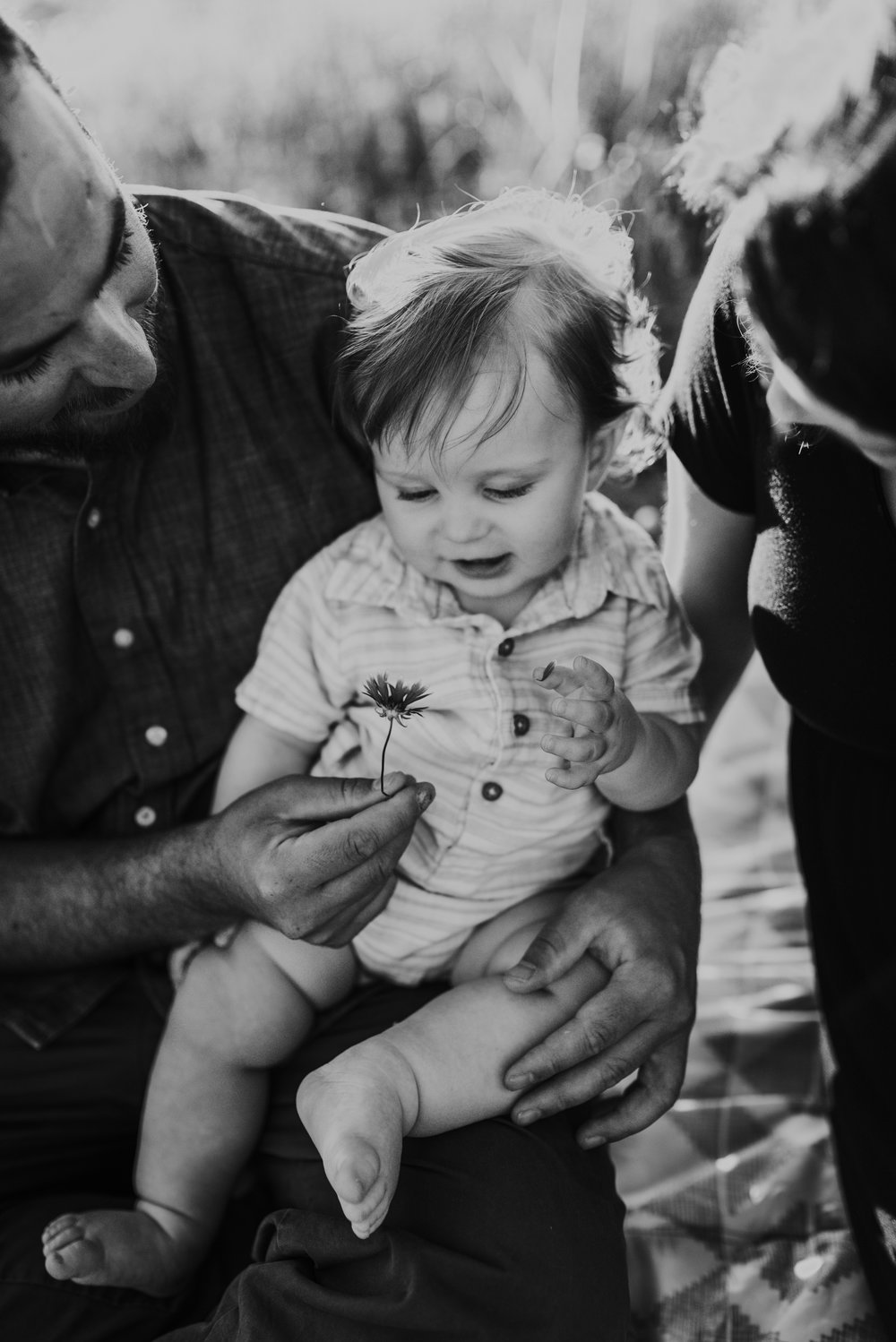 """""""I couldn't have asked for more! Lilly was wonderful and captured the most beautiful moments of our family. She was even able to get some with our crazy dog. We will treasure these photos for years to come."""""""