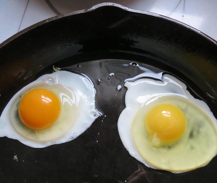 Look at the difference here! Farm-fresh egg on the left, store-bought on the right.