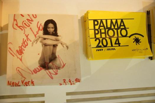 palma_003.JPG