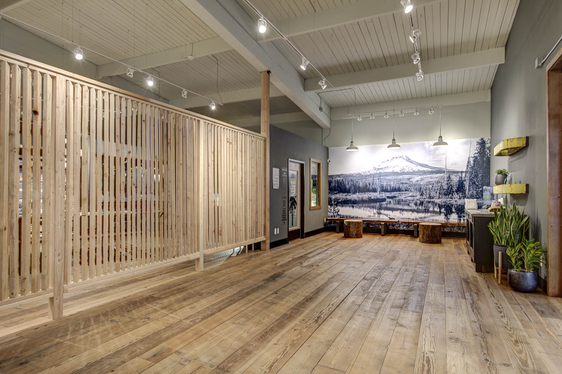 Harka Architecture_Five Zero Trees_Marijuana Dispensary (1).jpg