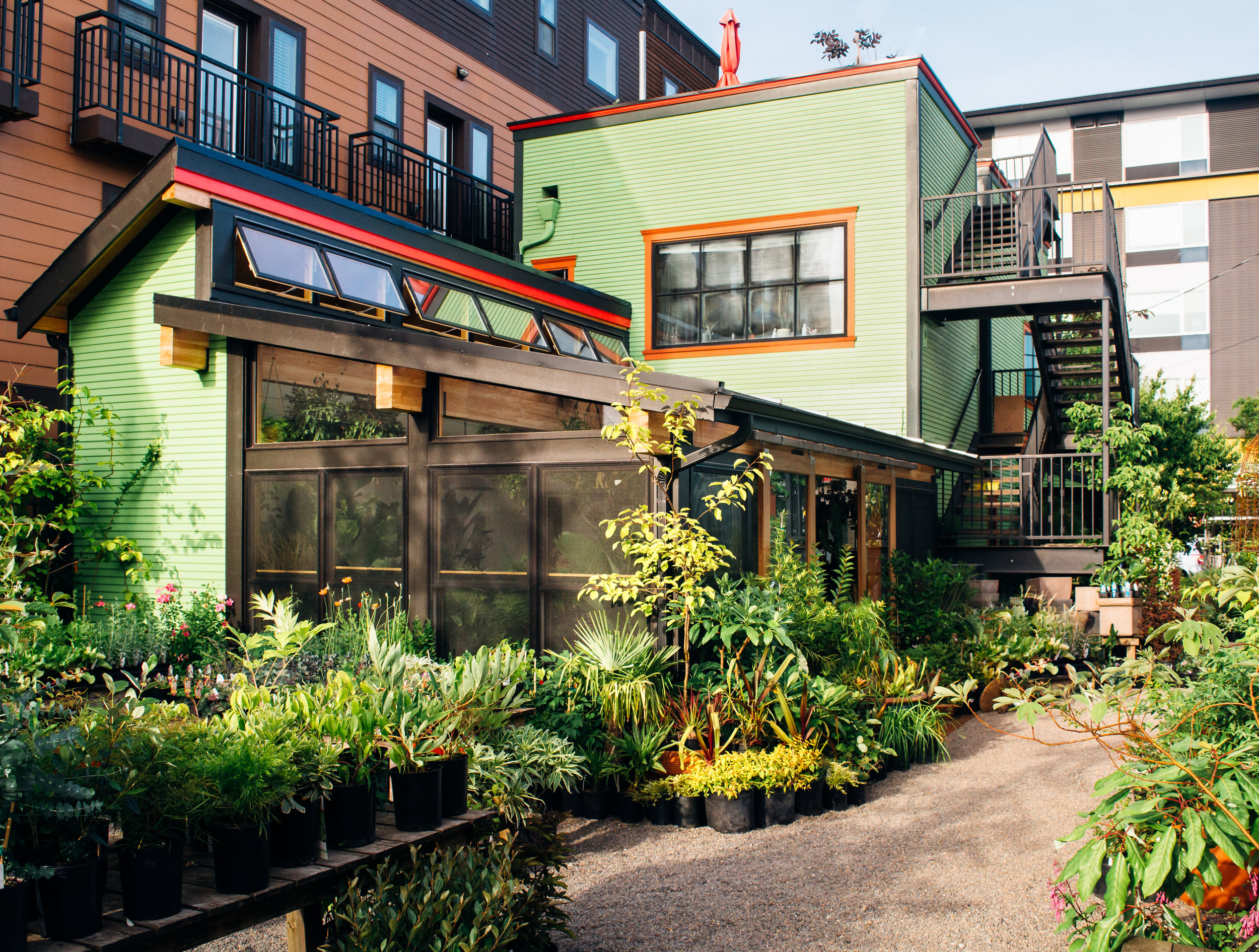 Harka Architecture_Pistils Nursery_Solarium_Conservatory (14).jpg