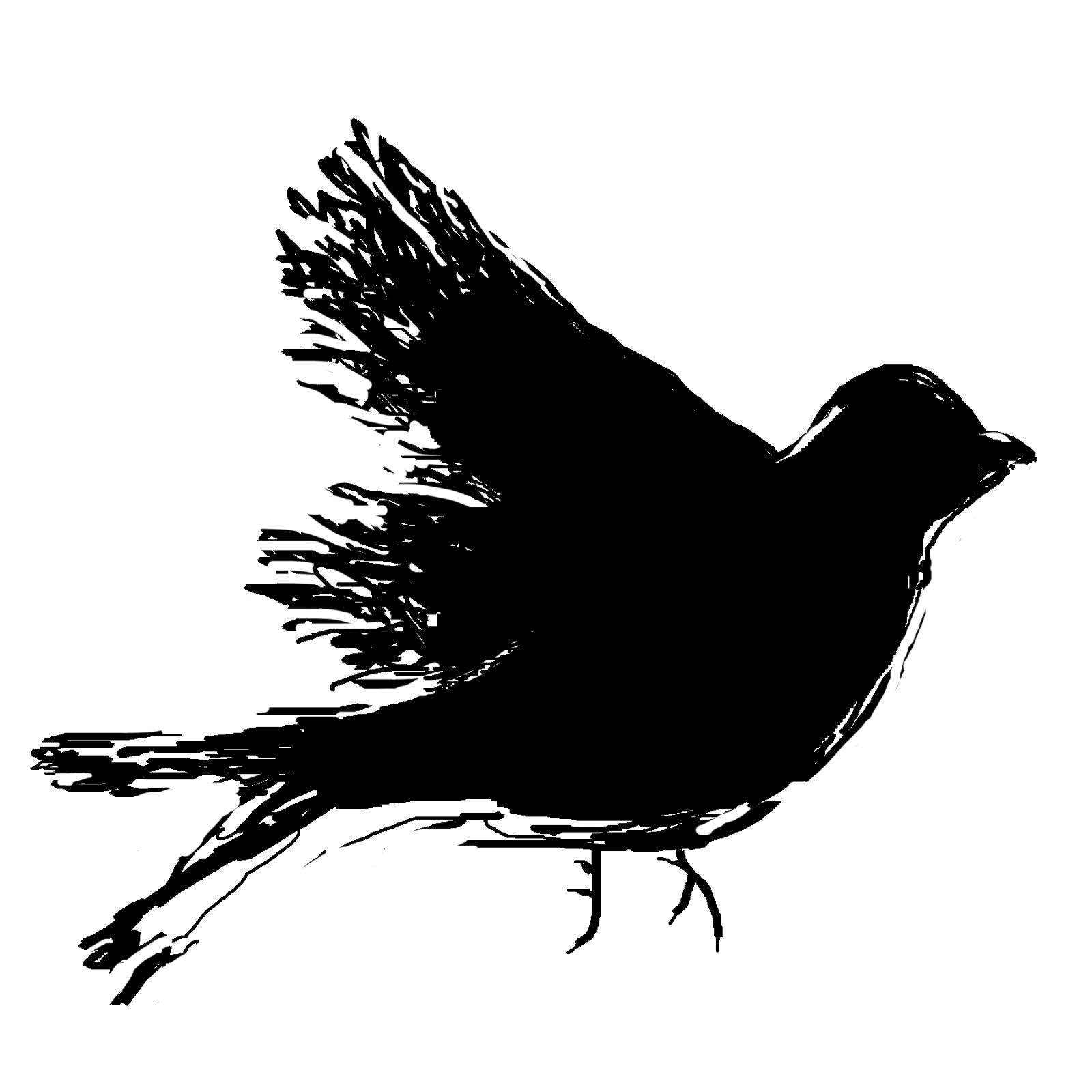 sketchyBlk [2788204].jpg