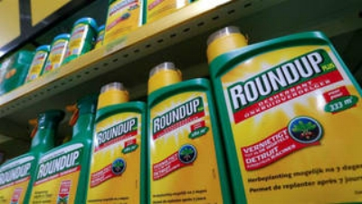 The most popular weed killer in the U.S.
