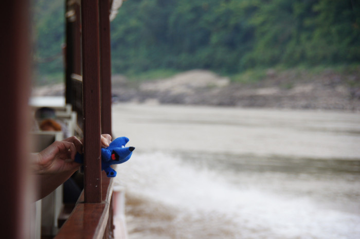 Zippy's journey through Mekong River