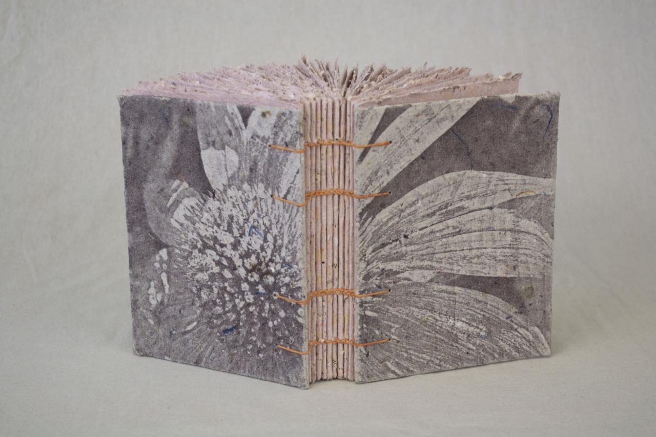 echinacea book