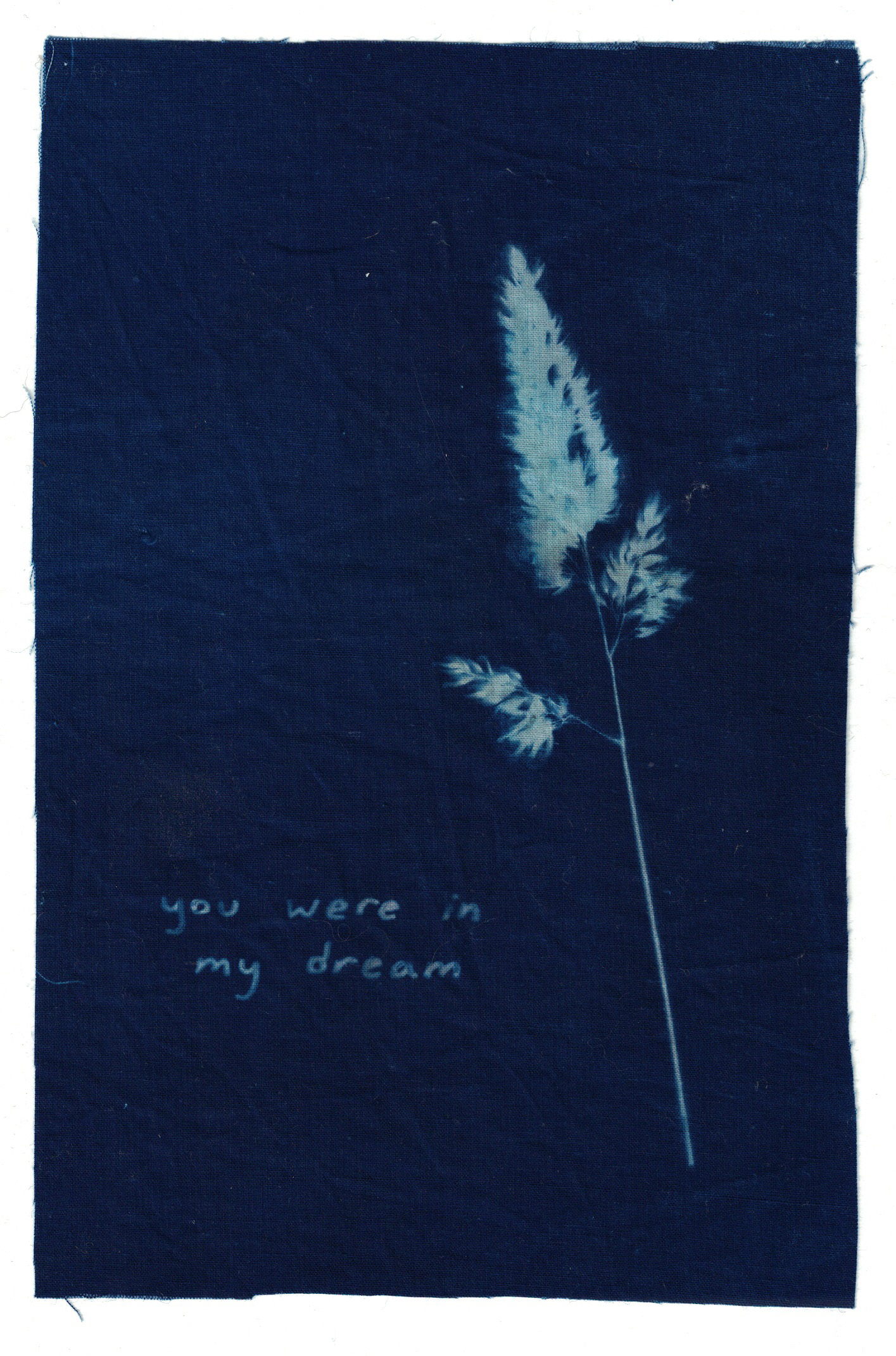 you were in my dream