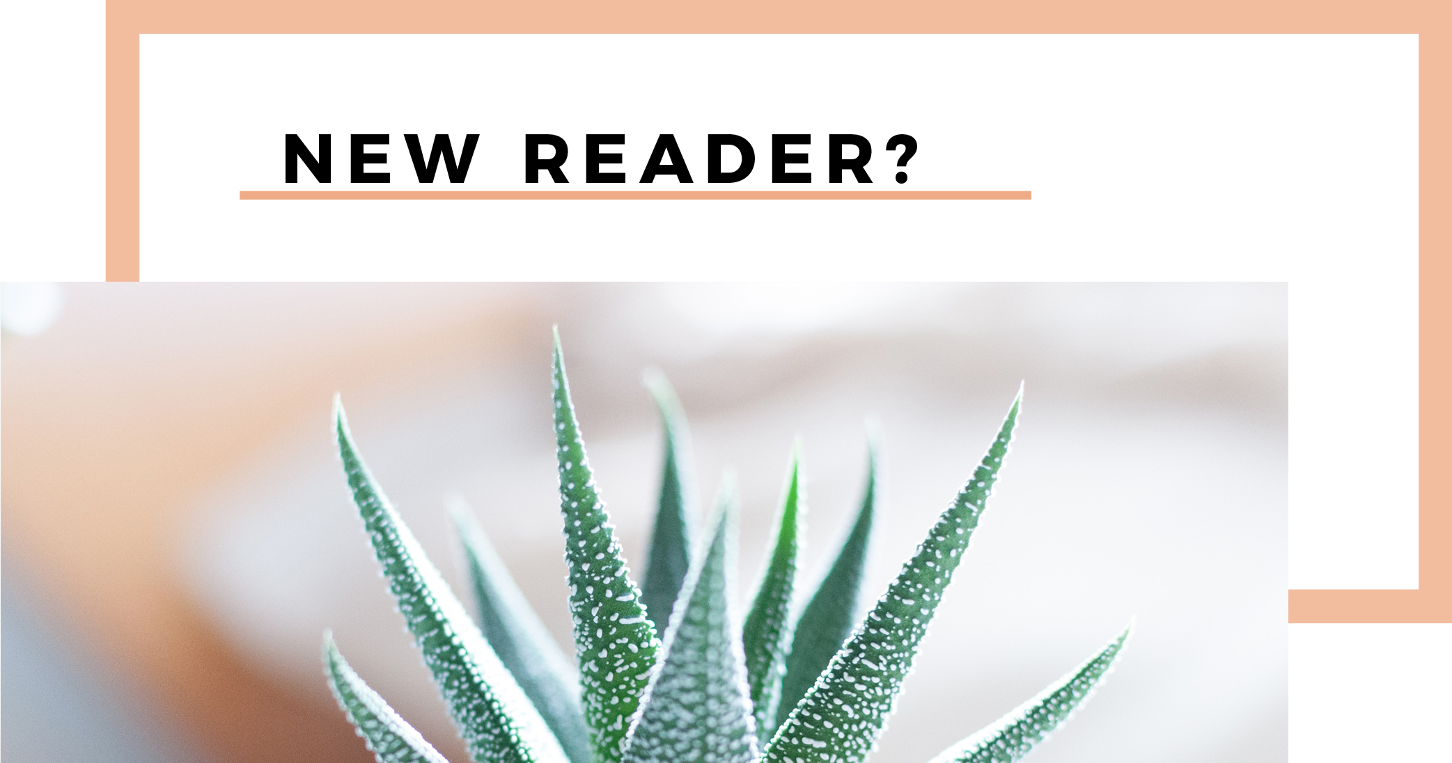 newreader2.jpg