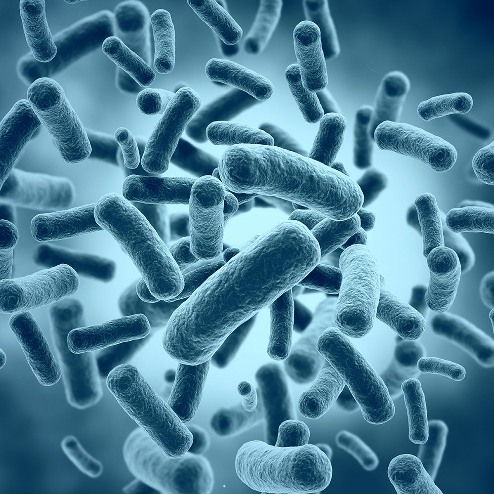 Therapeutics Derived from the Microbiome -