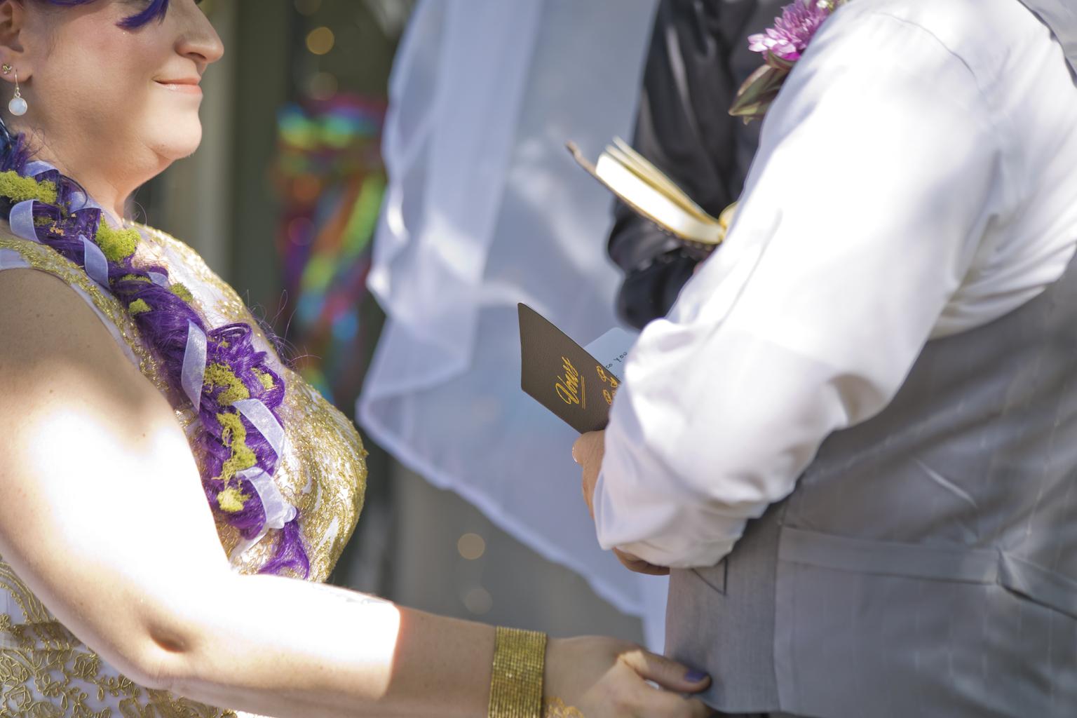 Tina and Adam wedding_Studio Misha Wedding Photography Asheville Photographer and Videographer00007.JPG