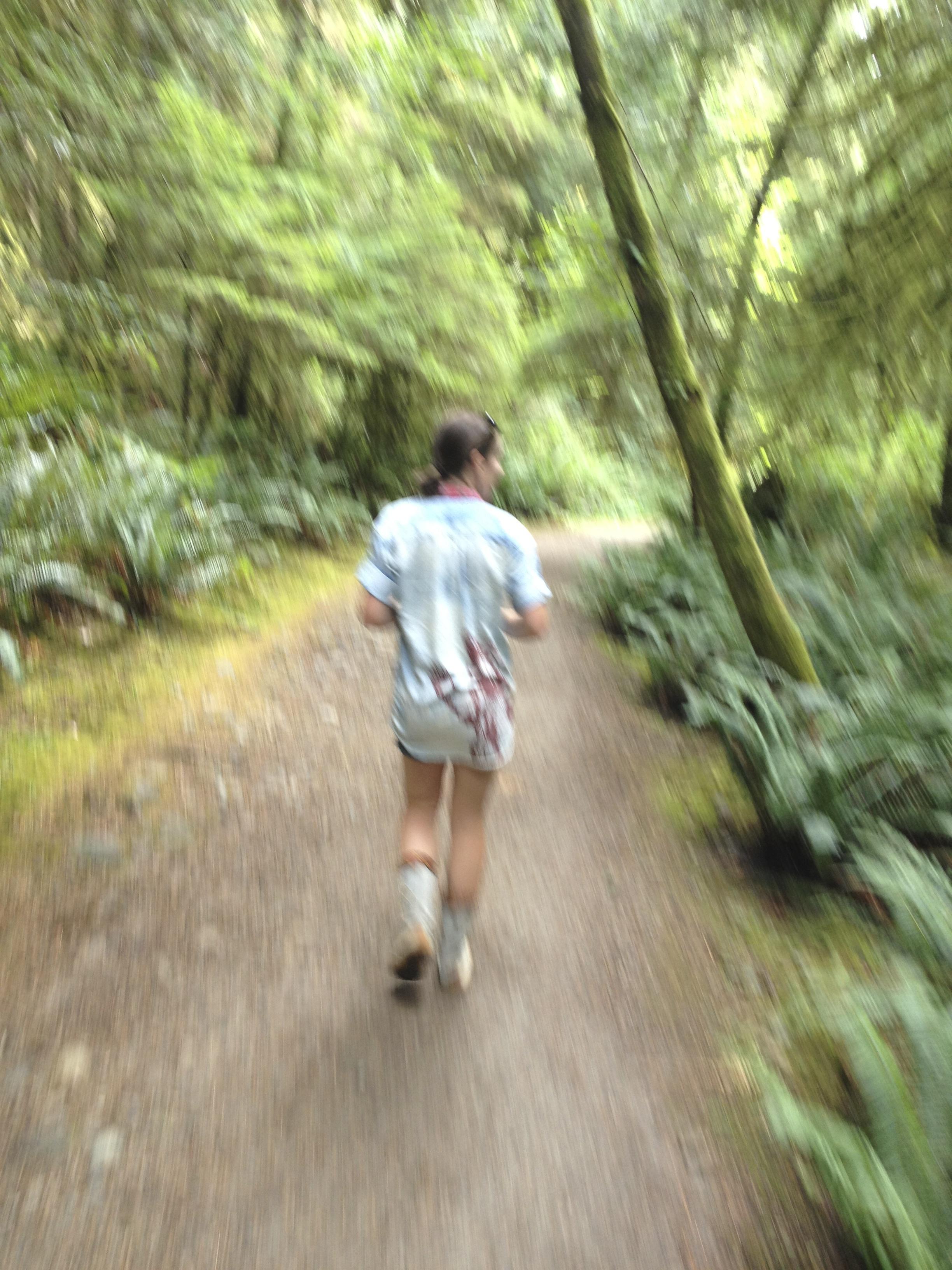 blurrywoods.jpg