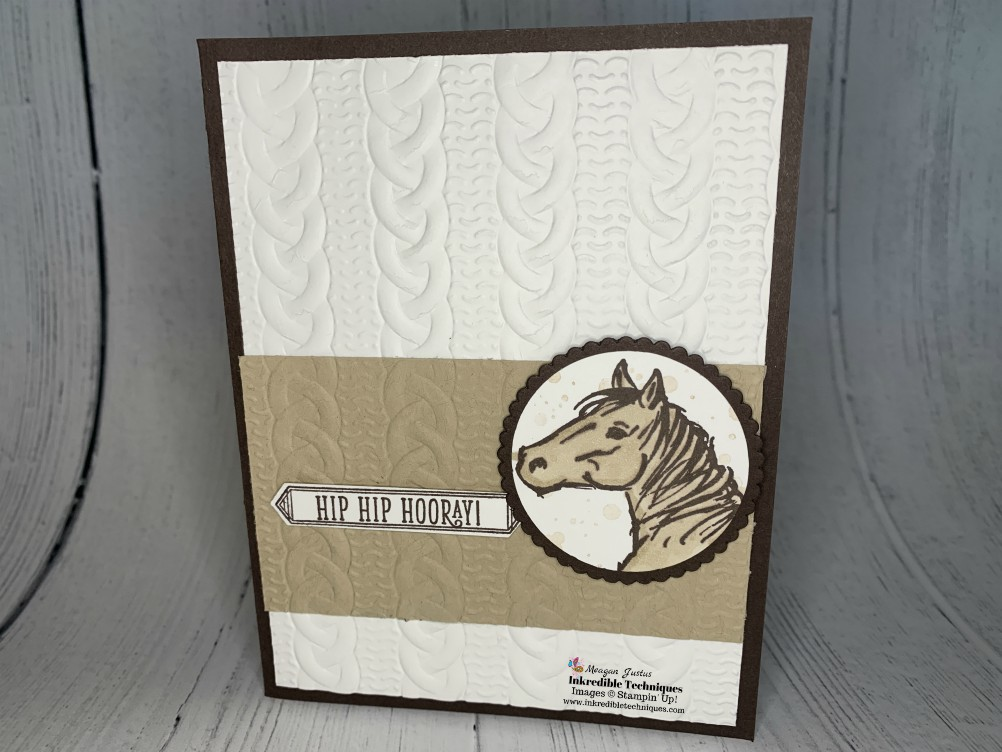 Stampin' Up Let it Ride Makes a Lovely Birthday Card. Perfect Card for Guys too!