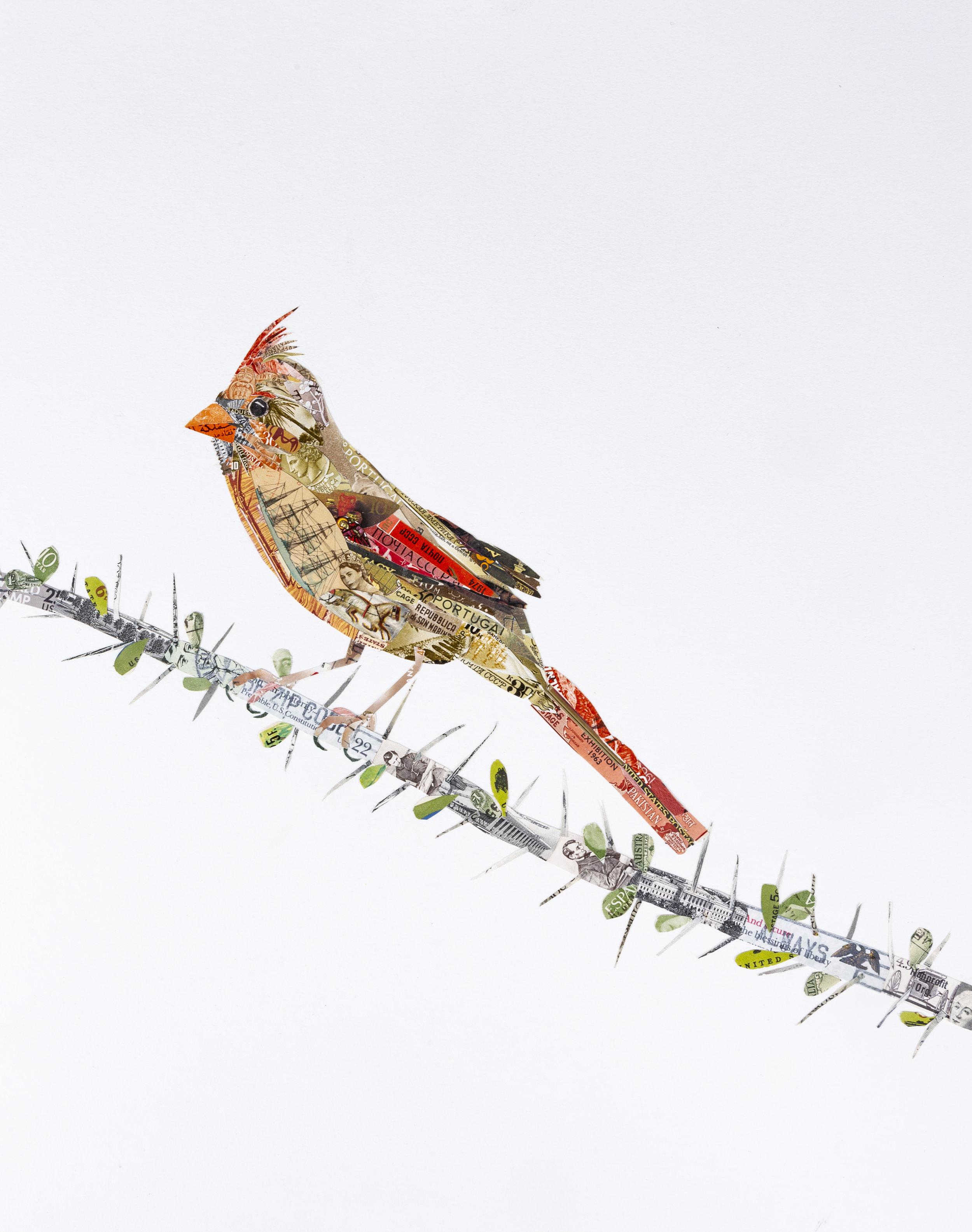 Cardinal #3, 2018