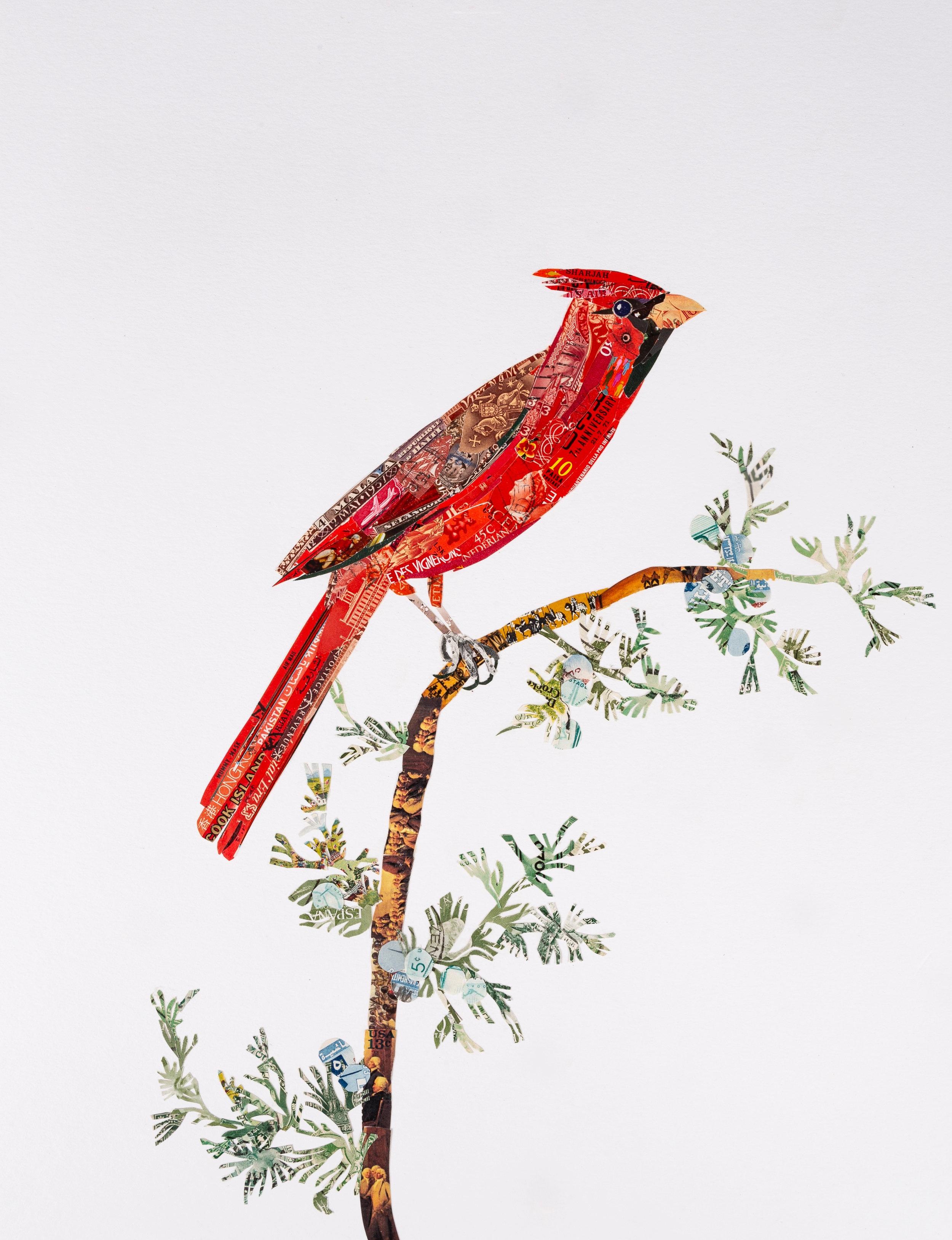 Cardinal #2, 2018