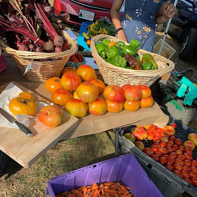 The market is still going through October 10 and the harvest is coming in on Cape Ann farms!! See you today 3-6:30!