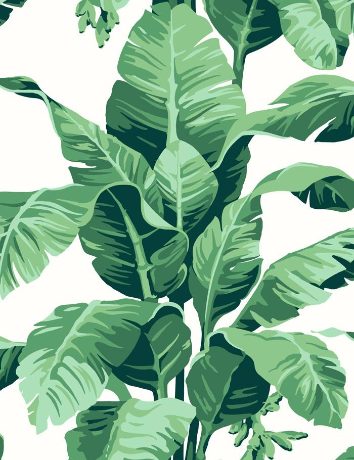Pacifico Palm Wallpaper Ivory