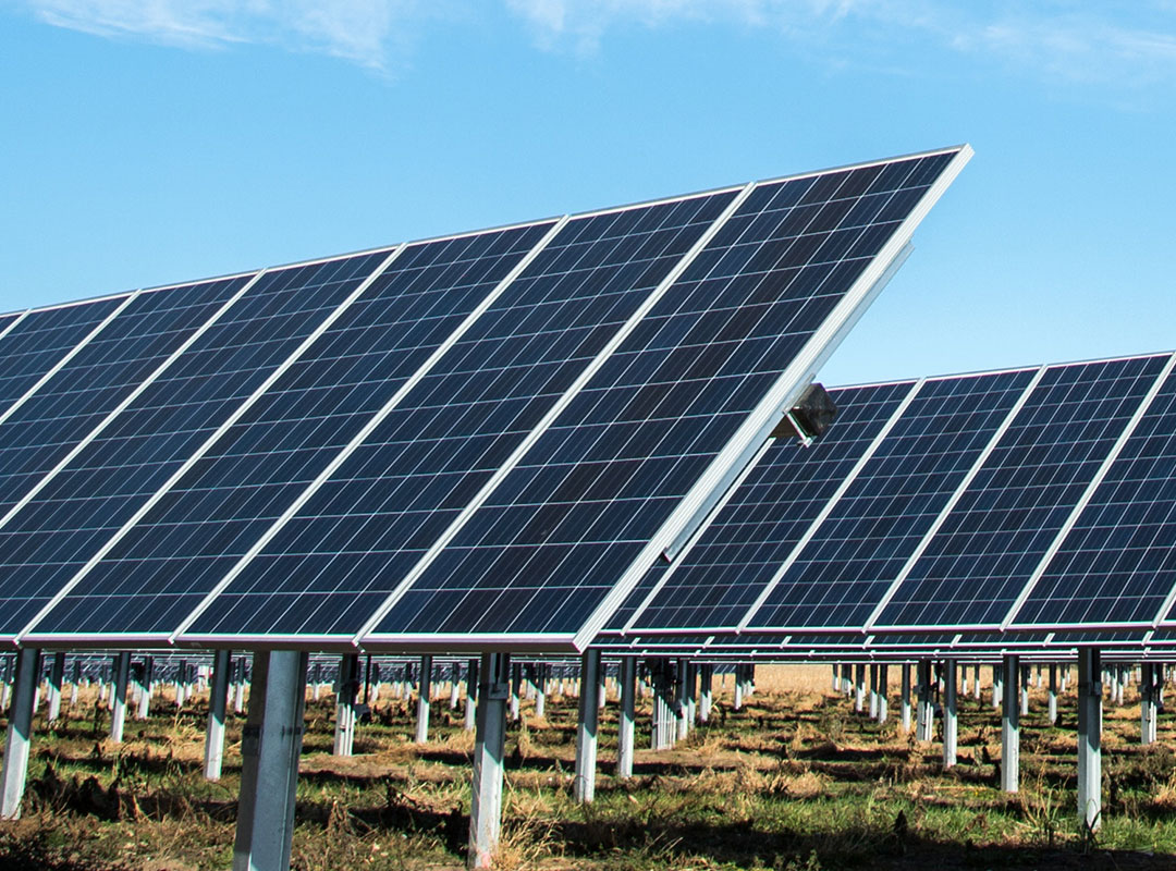 Balmoral Avocados - We installed a ground mounted PV solar system so Balmoral Avocados could power their bore pump to ensure a great crop.