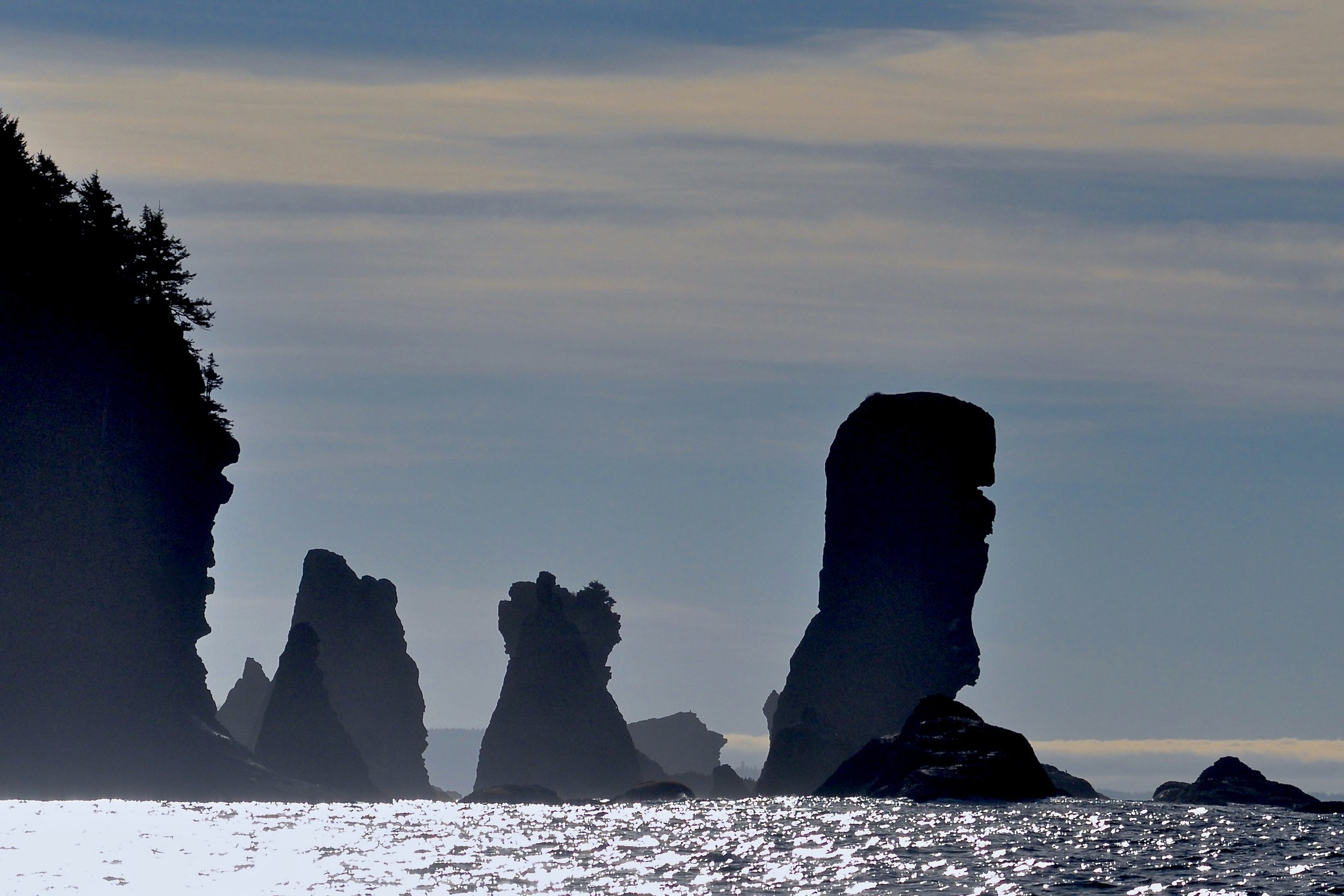 Sea Silhouettes, Cape Flattery, Washington Coast