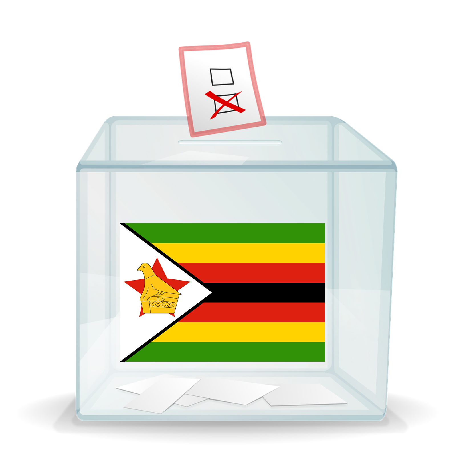 Vote for Zimbabwe book