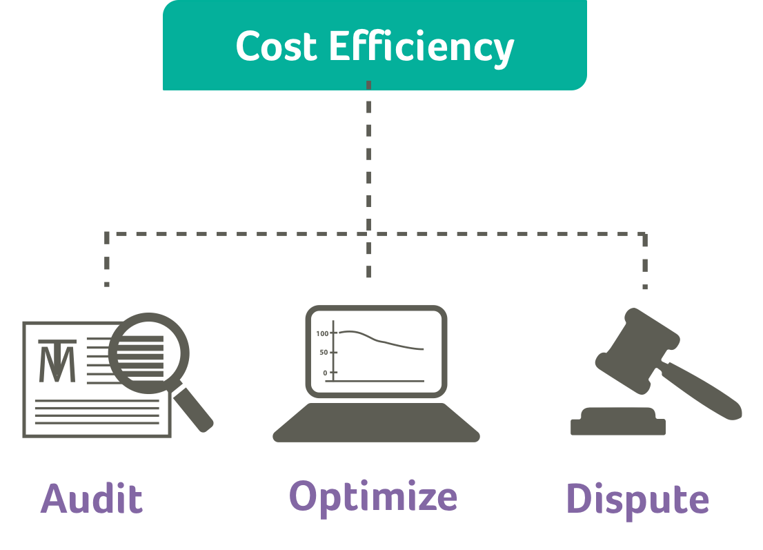 We audit and optimize your telecom services to find budget within the budget.   Learn More →