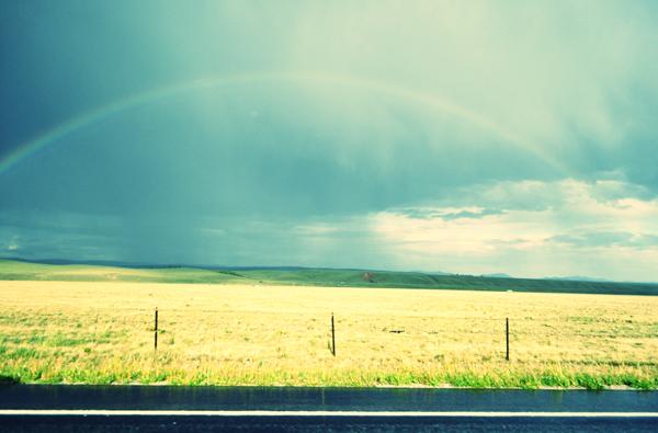 rainbow-buffalobill