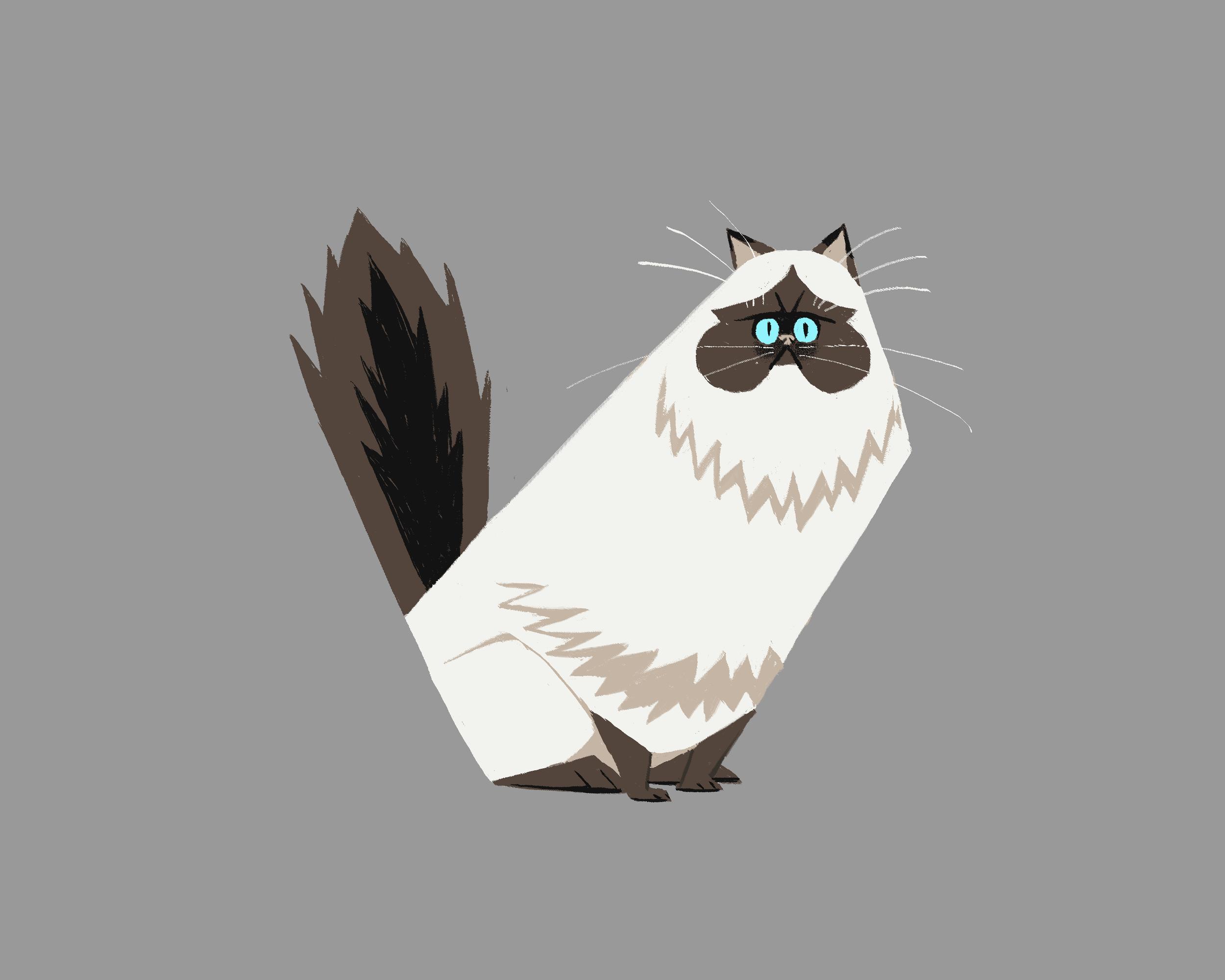 Persian Cat Clean.png