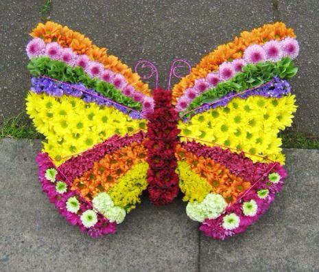 Butterfly tribute.jpg
