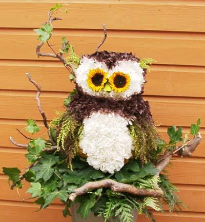 Owl tribute.jpg